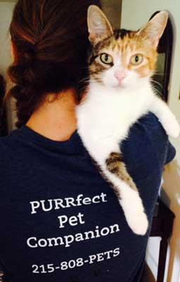 PURRfect Pet Companion